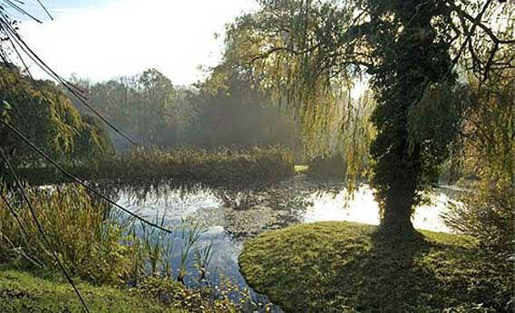 Beispiel: Schlosspark, Foto: Schloss Fachsenfeld.