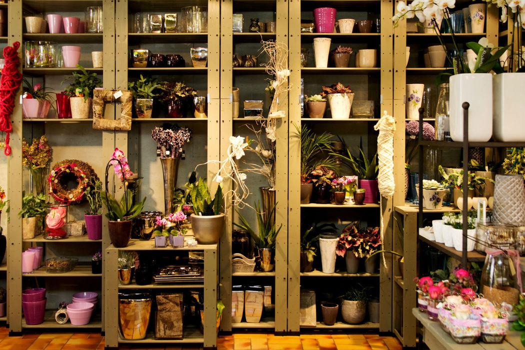 Beispiel: Ladengeschäft, Foto: Idea Verde.