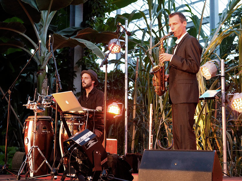 Saxophone, Lounge, Hintergrundsmusik