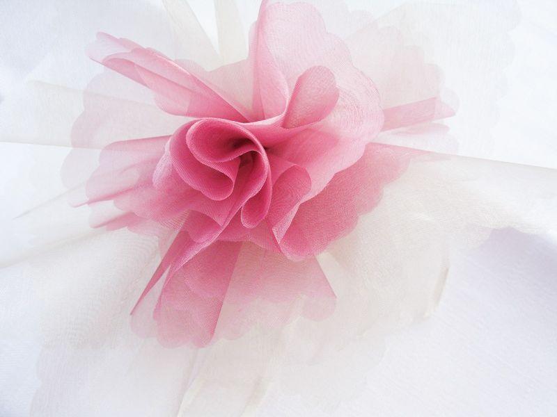 Beispiel: Rosa Blüte, Foto: Giorti.