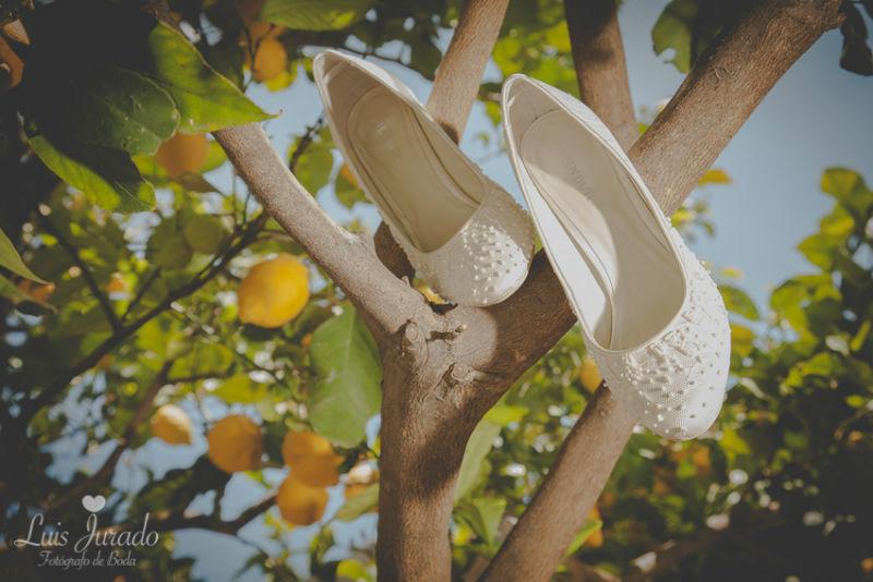 Los zapatos en el naranjo
