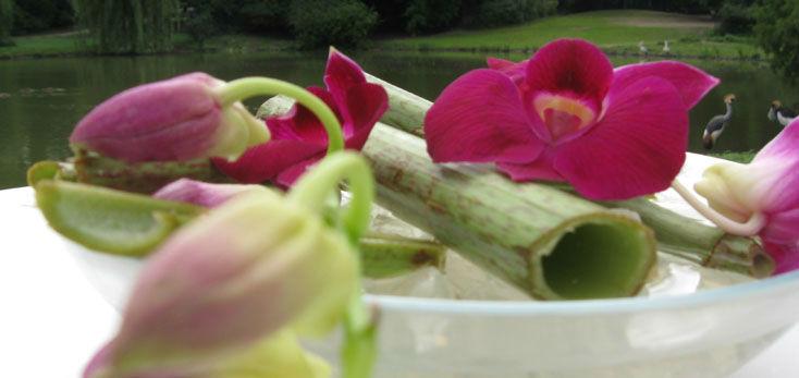 Beispiel: Trends für Ihre Festtagstisch, Foto: Blumenbinder Trittmacher.