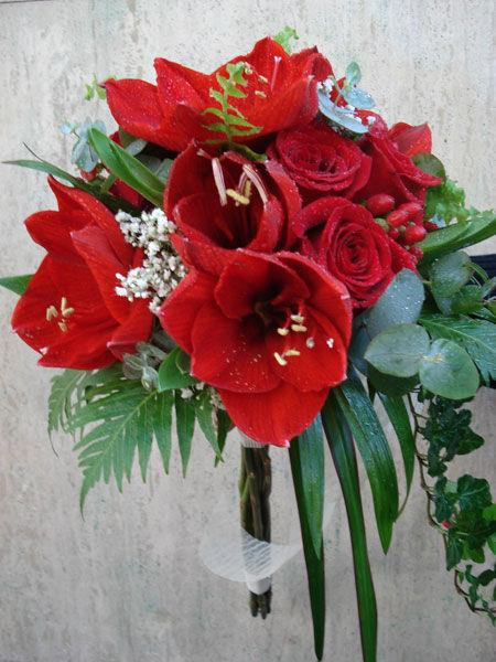 Bacarra Floristas