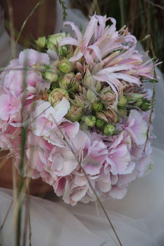 Leicht...fröhlich...jung...rosa...❤