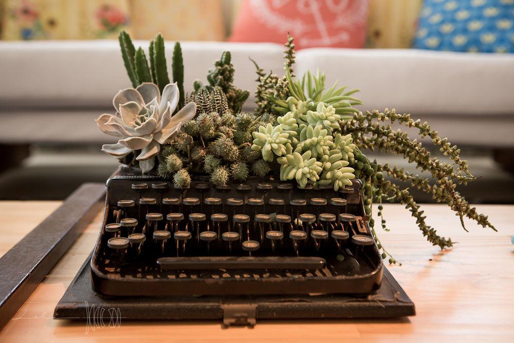 Todo nosso amor por suculentas e cactus. E a máquina de escrever vintage virou um jardim
