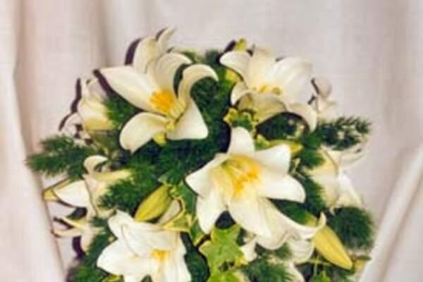 Pointillon Arte floral