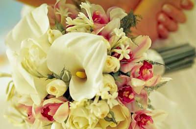 Rosa Rosè Decorações