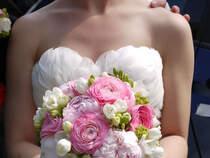 Kwiaciarnia Zielona Oliwka