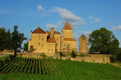 Château de Pierreclos