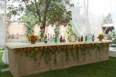 Puma Salitas Lounge