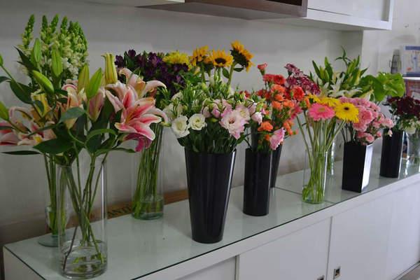 Ceiça Flores