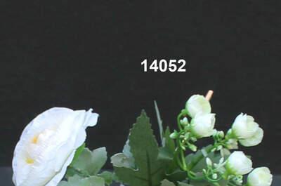 Iris confezioni