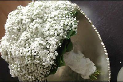 Les Fleurs Vagabondes