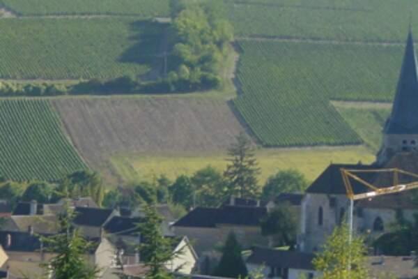 Domaine Alain Geoffroy