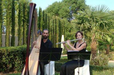 Ars Scena Espacios Musicales