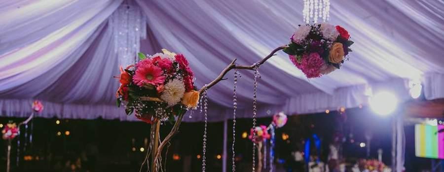 Paola Sarabia Wedding Event Planner
