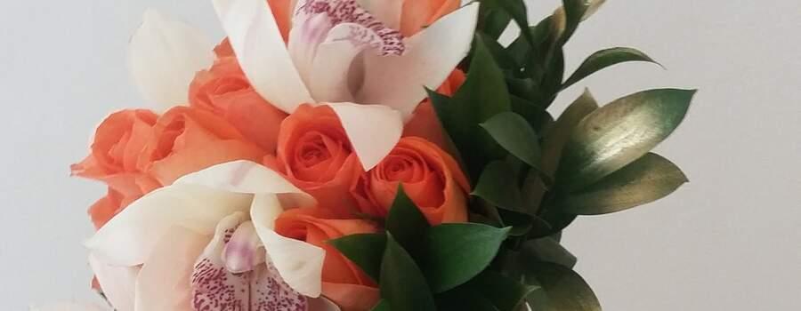 Flores Coquett