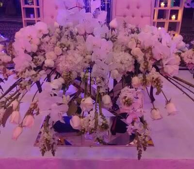 Anthurio Diseño Floral