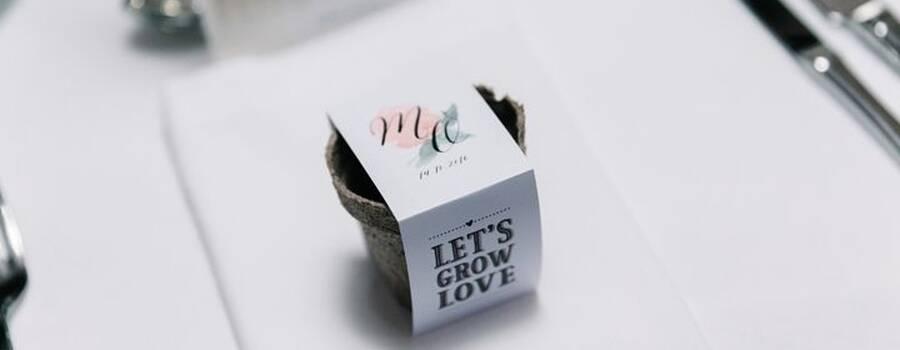 Detalle para invitados - Kit de semillas