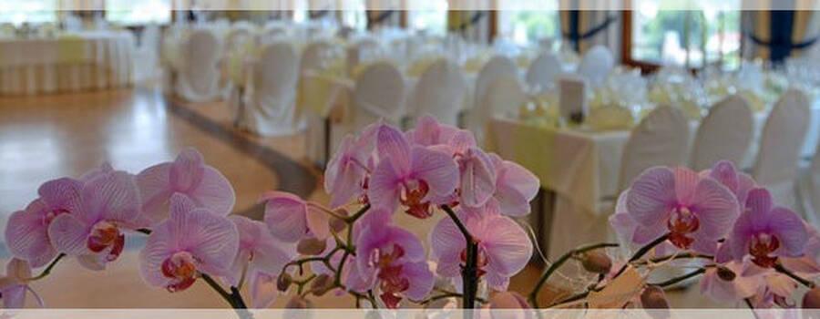 Beispiel: Orchideen - Hochzeitsbankett, Foto: Altstadt-Hotel Zieglerbräu.