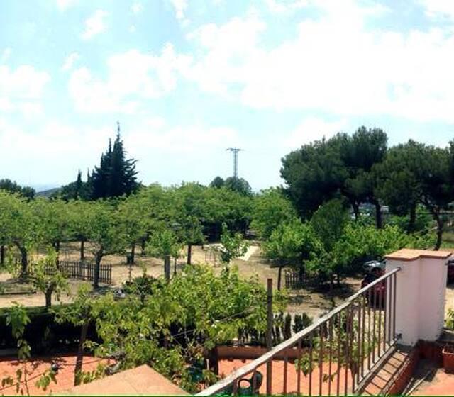 Les terrasses de Sant Roma