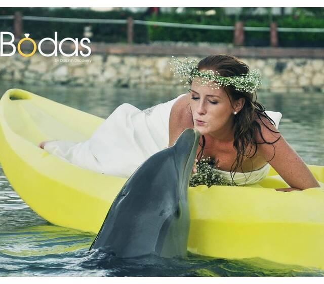 Bodas con Delfines.