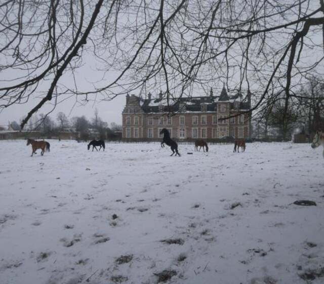 © Château de Béhen