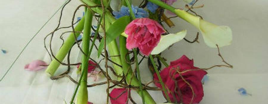 Tine' Angelo fiori