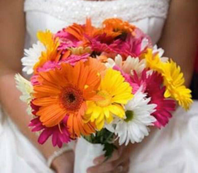 Los Girasoles Wedding Planning