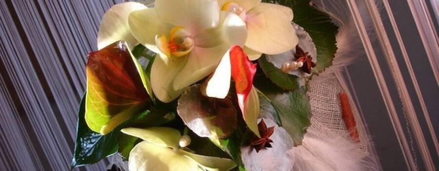 Lidé Fleurs