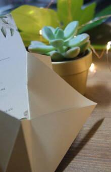 Envelope Origami pormenor