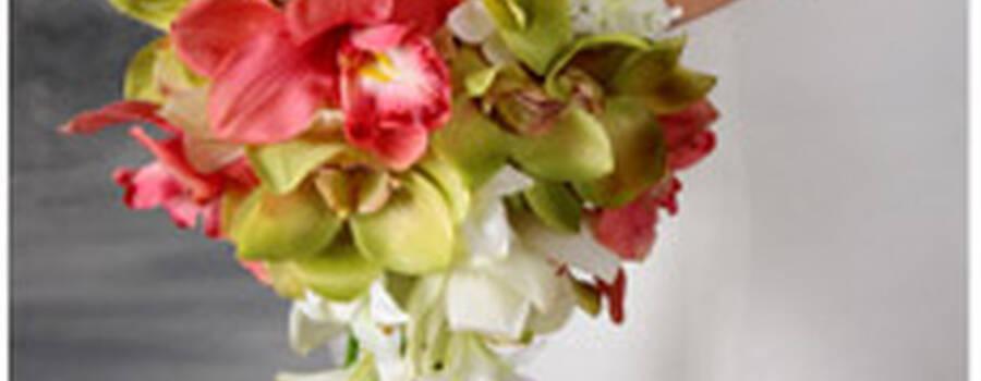 Foto: Florista.pt