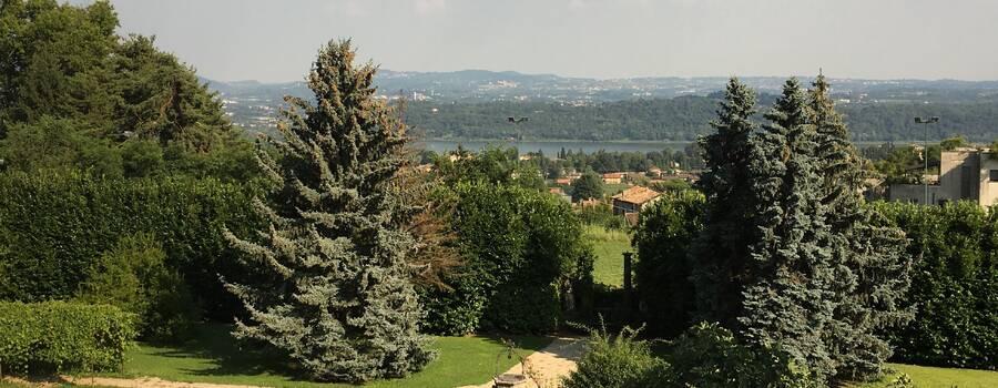 Veduta del lago di Alserio