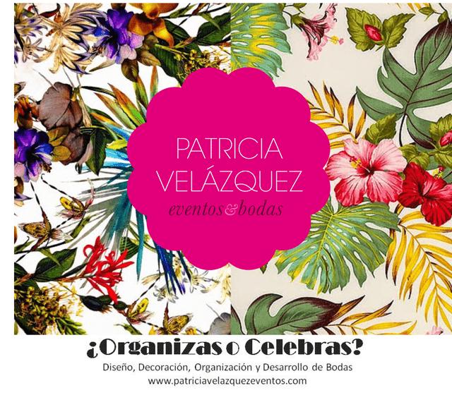 Patricia Velázquez Eventos