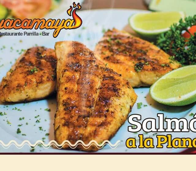 Guacamayas Parrilla