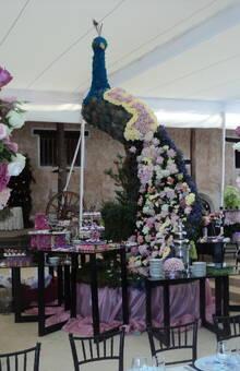 Federico Leon Pinatte - Decorador de Bodas Boda en la Hda de Venta de Guadalupe en Pachuca Hgo. Un Pavo Real de flores en la mesa de postres y Diseños altos en palo de rosa y hueso