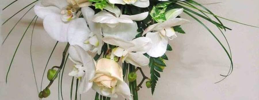 Maison Queyroi Fleurs