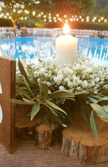 Mint Wood Eventos y Decoraciones