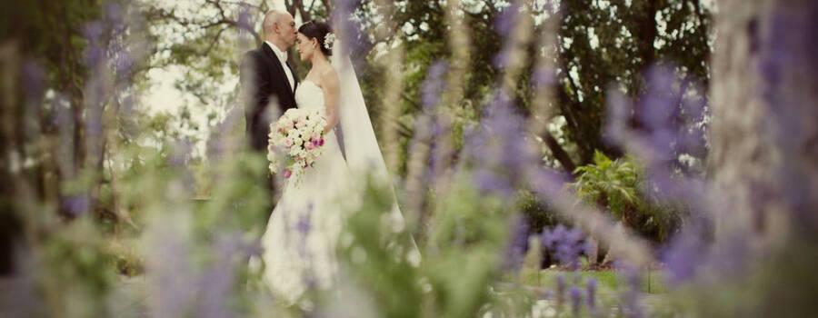 una boda magica