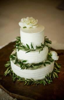 Fin Cake Design