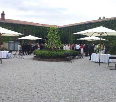 Papillone Wedding