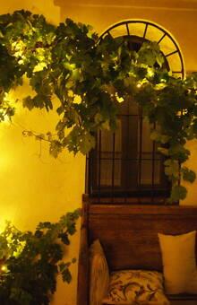 Detalle iluminación parra pequeña para Boda M&I zona cóctel Hotel Rural Cáceres