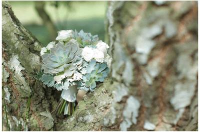 Verde por doquier: Una boda decorada con elegantes suculentas