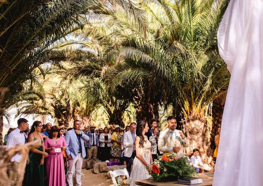 Consigue una boda de ensueño con decoraciones personalizadas y flores naturales