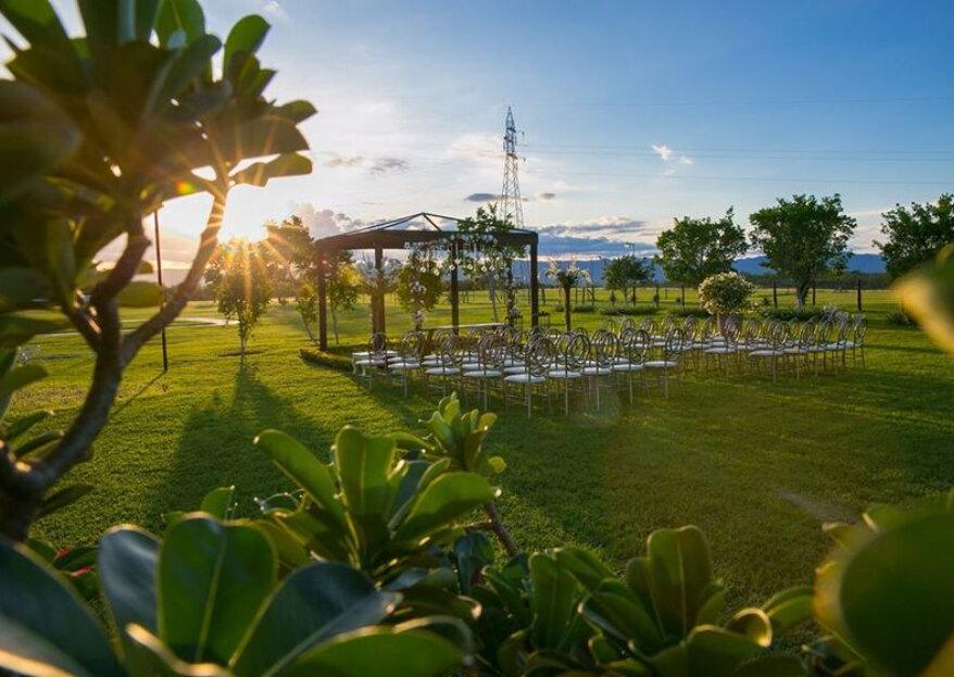 6 excelentes consejos de wedding planners para tener una boda especial