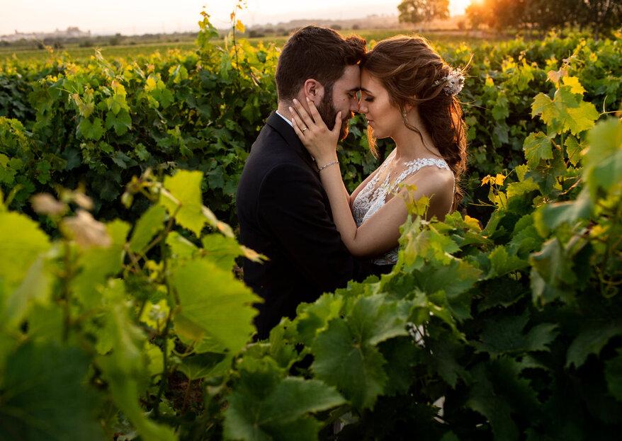 Entre viñedos: la boda de Clara y Juan