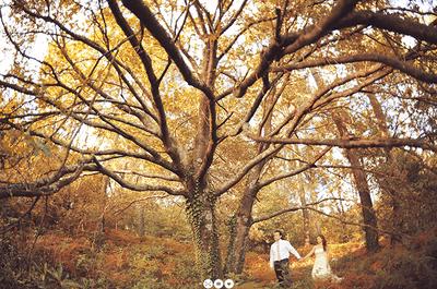 7 Wedding Decor Items that Make an Instant Autumn Wedding