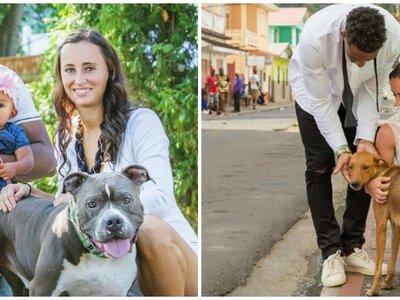 Este jugador de la NFL hizo de su boda una causa para ayudar a animales sin hogar