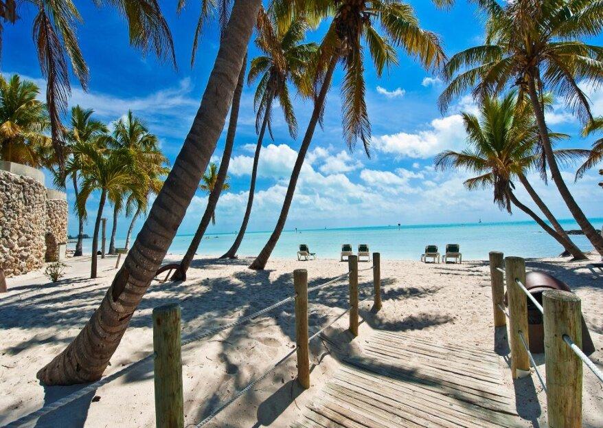Lune de miel extra : de Miami aux massifs coralliens, découvrez les richesses de la Floride