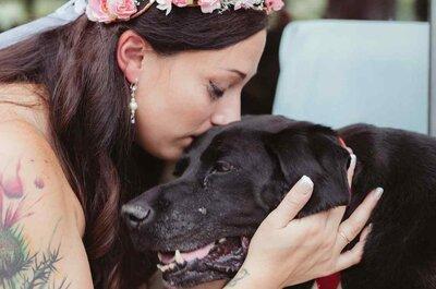 L'amore vince su tutto: quello che ha fatto questo cagnolino è incredibile!